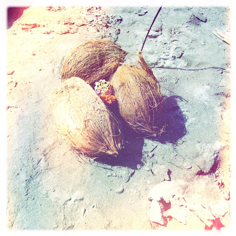Drei Kokosnüsse am Ganges