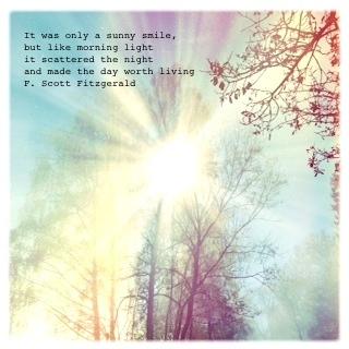 Wintersonne in kahlem Baum mit F.Scott Fitzgerald-Zitat